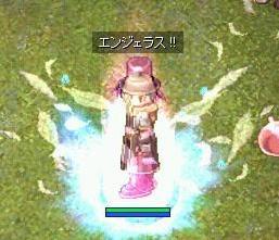 b0032787_213396.jpg