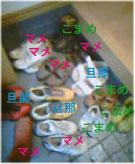 b0068551_1621792.jpg