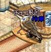 c0063960_0381052.jpg