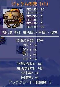 b0065824_735324.jpg