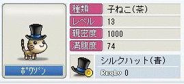 c0055239_81204.jpg