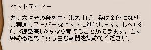 b0027699_04731.jpg