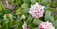 b0065666_18525946.jpg