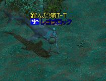 c0035735_20333945.jpg