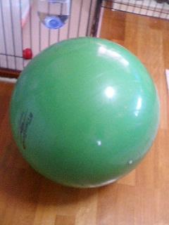緑色した変な奴_d0003977_17513923.jpg