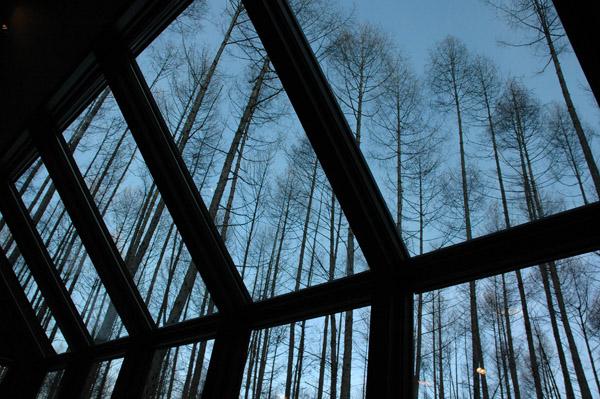 森の時計_a0016152_19172956.jpg