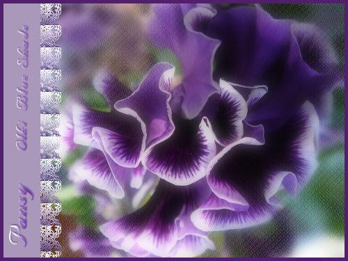 b0009845_16573159.jpg