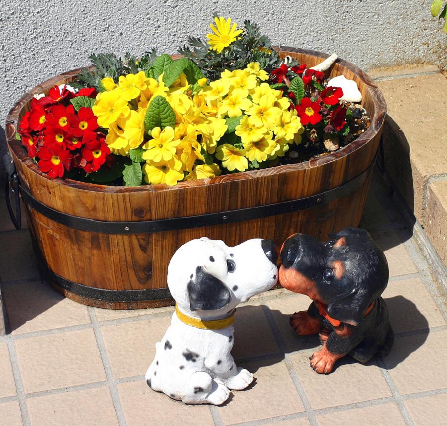 Flowers of Evil ♪_c0057800_2052535.jpg