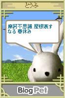 b0019611_21241583.jpg