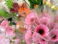 c0051385_2345333.jpg