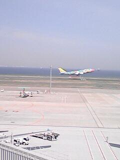 人生でいちばん飛行機を見た日_c0053520_0275590.jpg