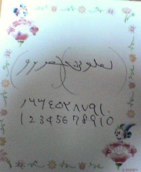 b0046398_0513928.jpg