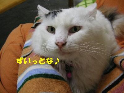 c0032073_14303436.jpg