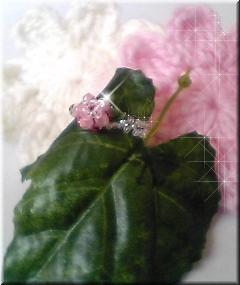 b0006987_10374681.jpg