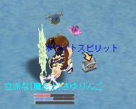b0037097_20223824.jpg