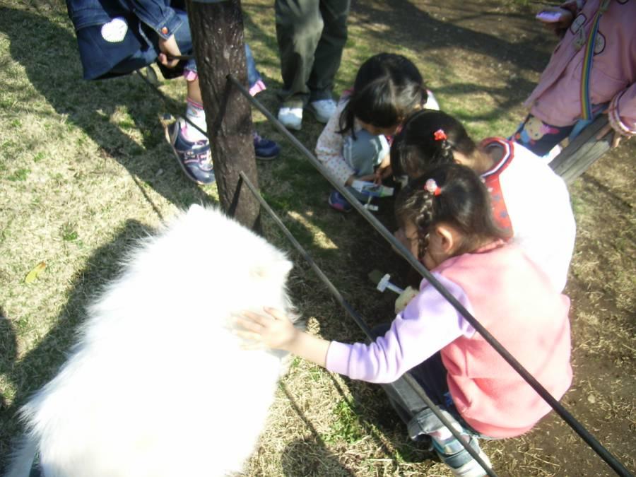 公園-050407_c0062832_715015.jpg