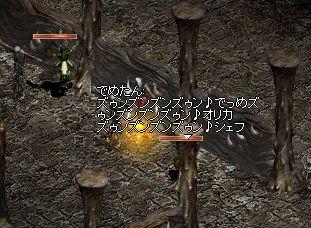 b0050075_20362011.jpg