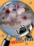 d0009311_13581550.jpg