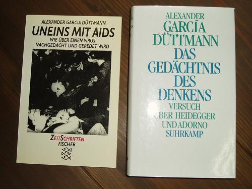デュットマンのエイズ論、ハイデガー/アドルノ試論_a0018105_23515353.jpg