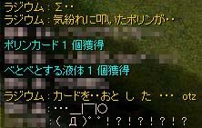 a0019167_9484263.jpg