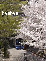 b0024795_9191462.jpg