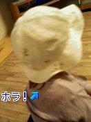 b0012145_203429.jpg