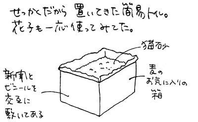 b0028155_19301030.jpg