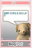 b0012521_10483843.jpg