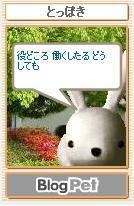 b0012521_10523837.jpg