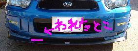 b0053472_2213568.jpg