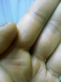 b0060945_17170.jpg