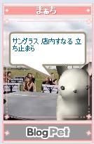 b0012521_21293980.jpg