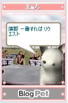 b0012521_21375234.jpg