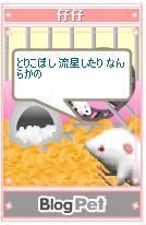 b0012521_2157788.jpg