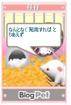 b0012521_2253167.jpg