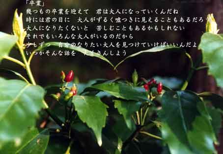 b0044724_17313946.jpg