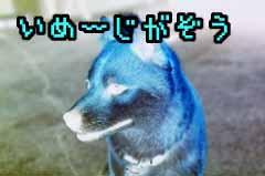 c0072032_16582851.jpg