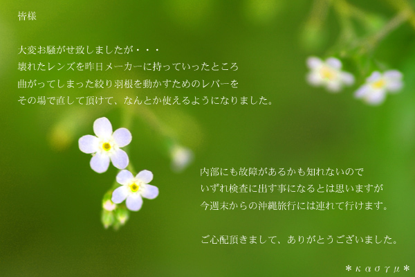 c0036880_2031127.jpg