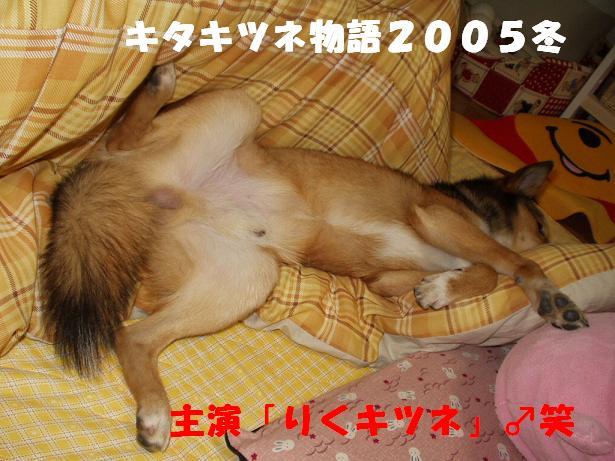 d0032004_79939.jpg