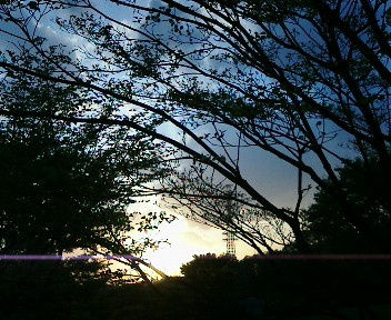 【視点と風景】2005年4月22日金…21木、KTa★brasilの観た景色_b0032617_20112615.jpg