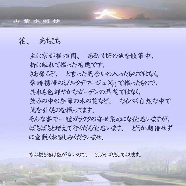 d0030636_1382523.jpg