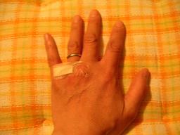 """""""飼い犬に手を噛まれる。。。""""_c0049950_19535946.jpg"""