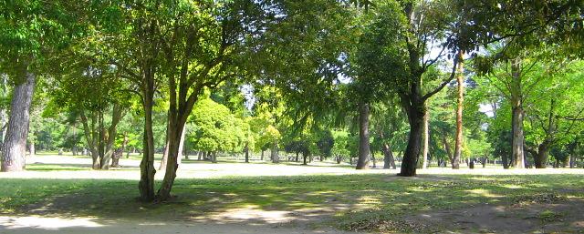 """市民の""""Central Park""""・・・別府公園_c0001578_1234211.jpg"""