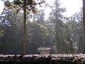 木の文化を訪ねて。_a0004391_910881.jpg