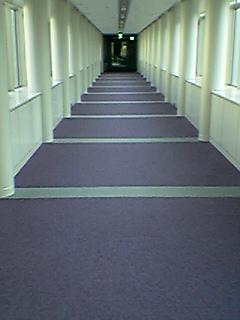 段のない階段? まちづくり交流プラザの渡り廊下_a0033733_5525345.jpg