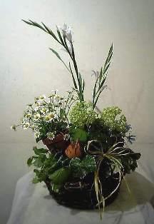 c0042463_20105952.jpg