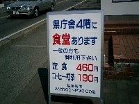 b0050301_15362159.jpg