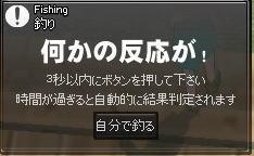 b0047348_15105663.jpg