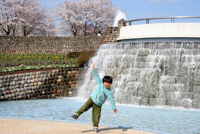 春・百花繚乱 その1_a0018671_3152642.jpg