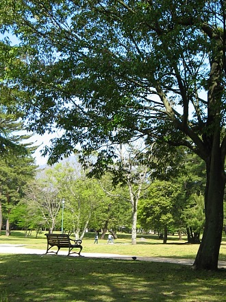 """市民の""""Central Park""""・・・別府公園_c0001578_21191279.jpg"""